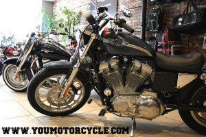 2003 HD sportster 100th anniversary edition 1