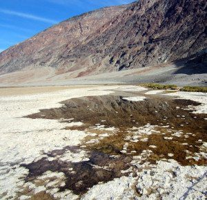Badwater Reflection in Death Valley