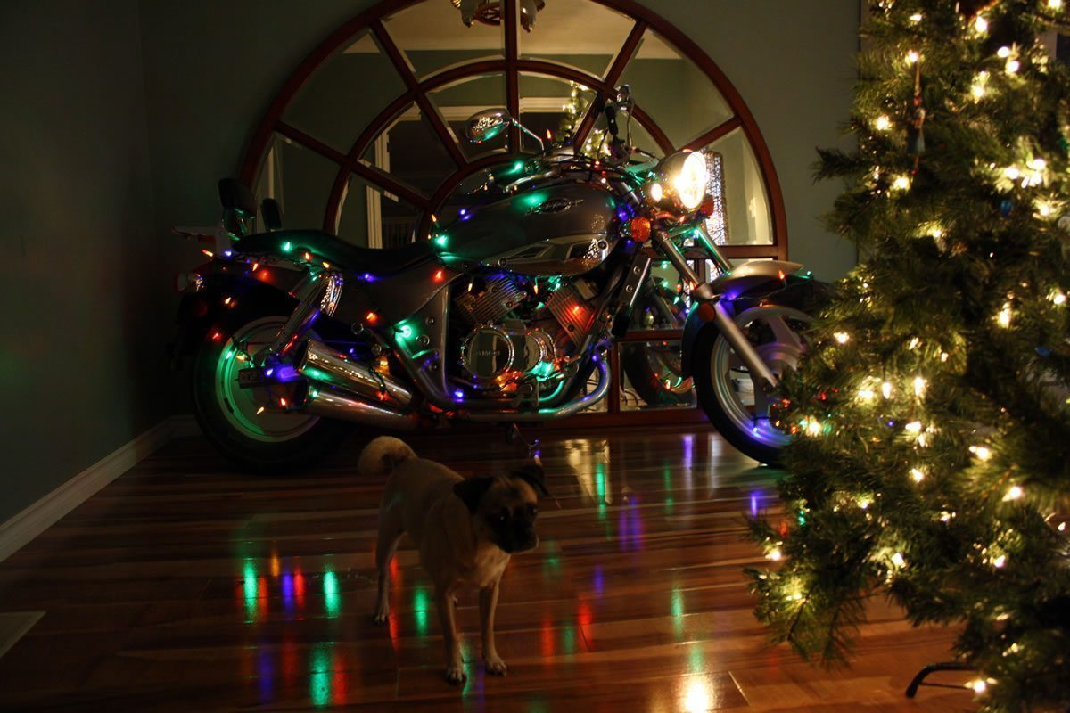 Motorcycle Inside the House