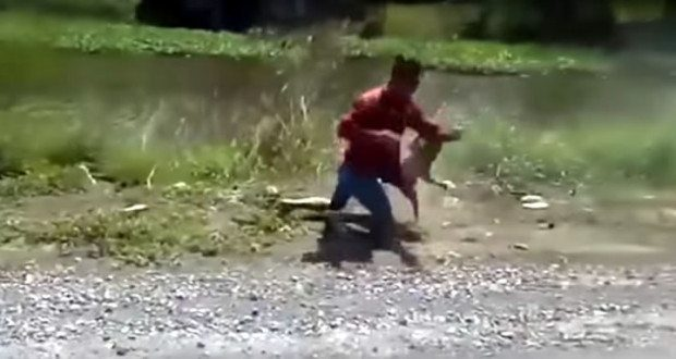 Motorcyclist Fights Monkey - Loses