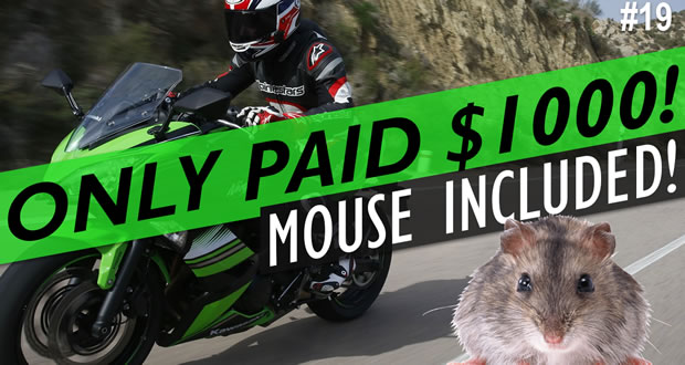 The $1000 Ninja 650 Rebuild Series: Episode 1